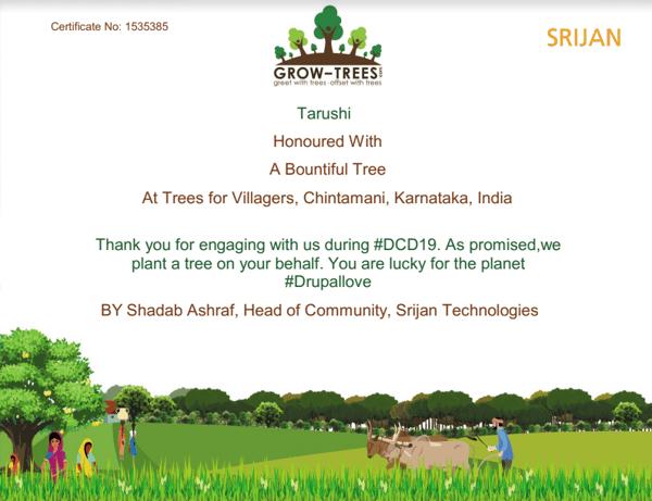 dcd trees
