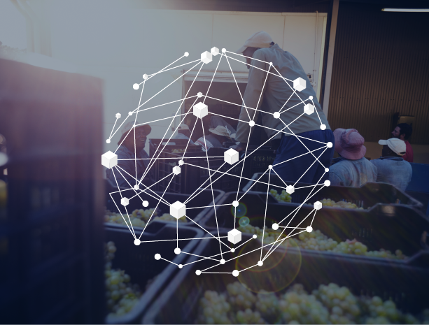 Food tracking Blockchain