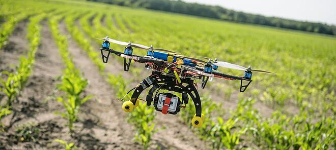 Drone in a field