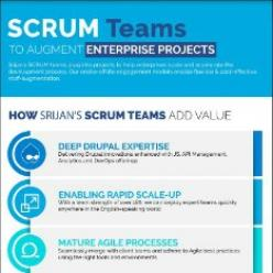 Scrum Teams