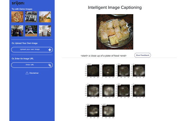 various part of image (food) shown for automatic caption generation