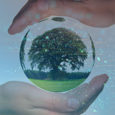 srijan-drives-tree-plantation-initiative-at-dcd19